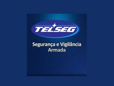 Telseg Vigilância e Segurança