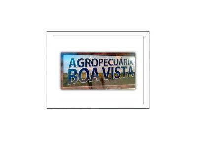 Casa Agropecuária Boa Vista